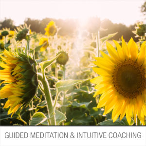 guided meditation & intuitive coaching